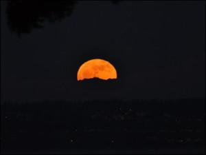110120_orange_moon